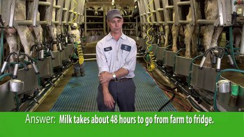 Know Your Dairy: All About Milk
