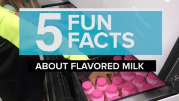 5 Fun Facts About Flavored Milk
