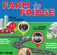 Farm-to-Fridge-Handout