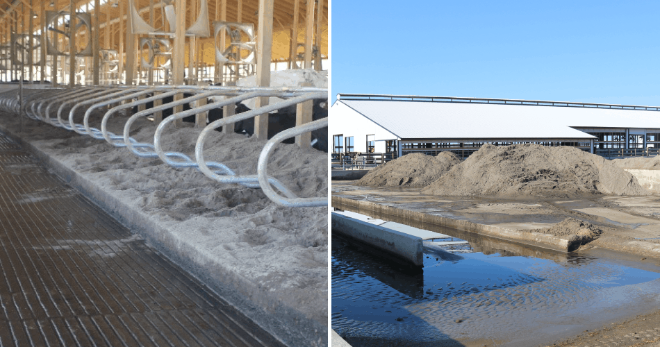 Photo collage of sand bedding and sand pile outside of barn