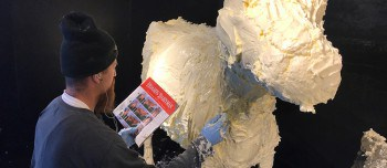5 Fun Facts about the Butter Cow Display