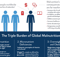 The-Triple-Burden-of-Global-Malnutrition