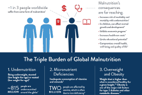The Triple Burden of Global Malnutrition