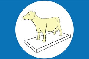 DIY Butter Cow Sculpting Contest