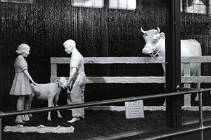 A Look Back at the Butter Cow Display