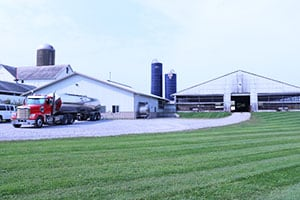 Virtual Dairy Farm Tour